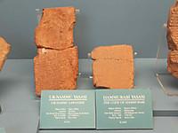 Hammurabicode