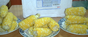 petercorn02.jpg