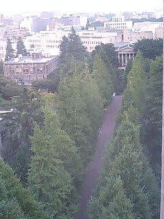 空から見た青山学院大学