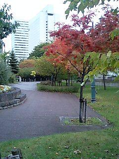 northland色づく札幌