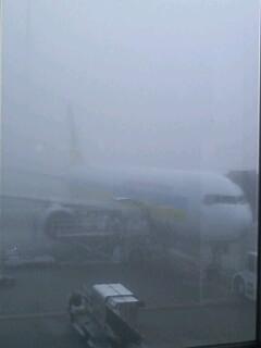 濃霧の千歳airport