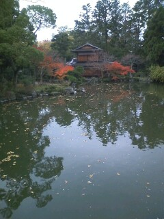 今時の京都palais