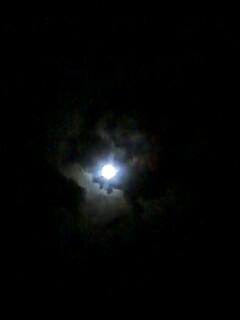 moon中秋の名月